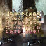 【これはヤバい】ブリーチ歴のあるスーパーハイダメージ毛に矯正したらこんな事になった!